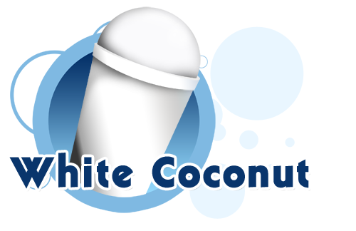 how to make coconut snow cone syrup